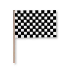 FLAG RACING PLSTC W/STICK 7''