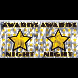 (*) BANNER AWARDS NIGHT METALLIC FRINGE