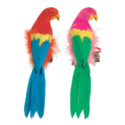 PARROT - FEATHERED 12'' ASSORTED COLOURS