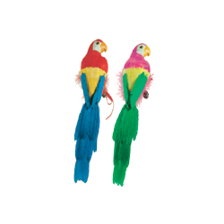 PARROT FEATHERED 20''